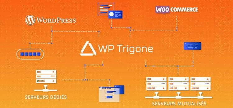 WP Trigon hébergeur spécialisé WordPress