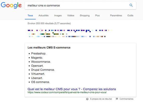 snippet serp google