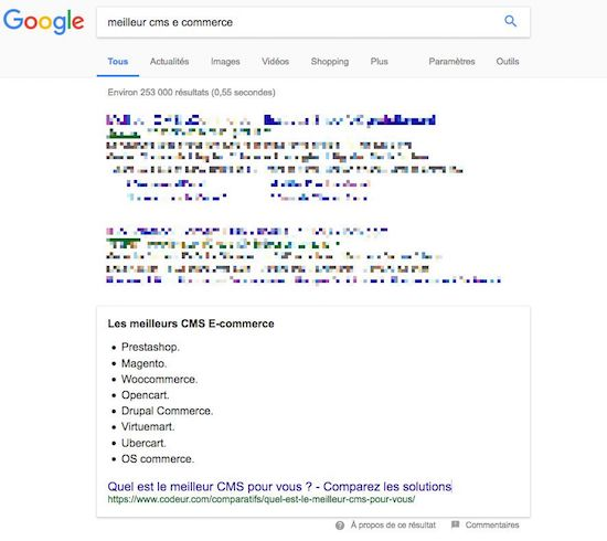 exemple de snippet google