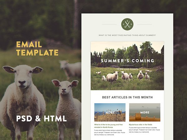 Template email HTML gratuit