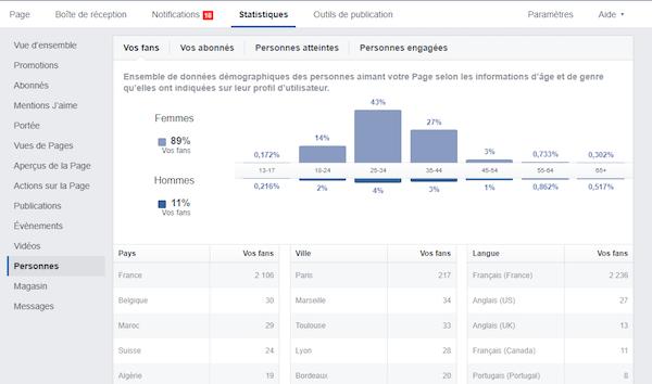 Audit social media Facebook