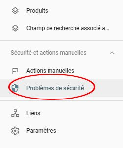 Sécurité Search Console