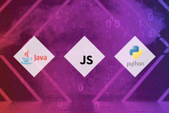 Codin'Night Battle Royale développement Java JS et Python