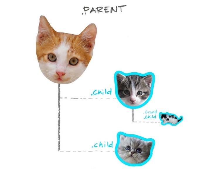 CSS parent child enfant