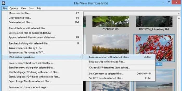 outils d'édition des métadonnées EXIF IrfanView