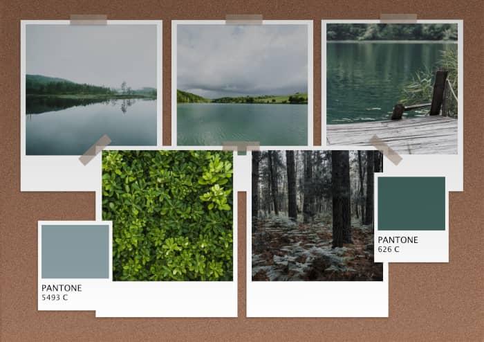 moodboard lac et forêt