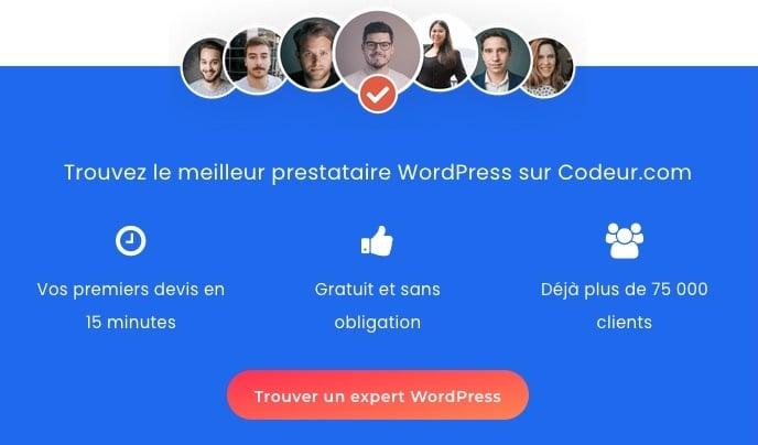 prestataire WordPress Codeur