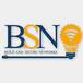 Logo BSN ( BUILD & SECURE NETWORKS )